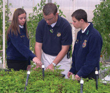 FFA Students in greenhouse