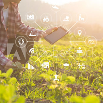 Agriculture technology farmer using tablet computer analysis data and visual icon by sodawhiskey