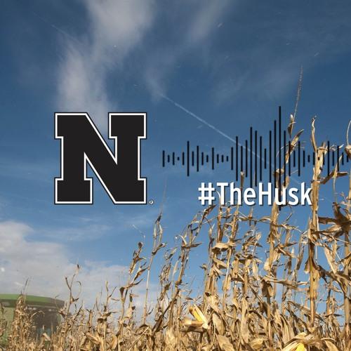 The Husk Podcast